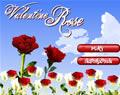 種玫瑰花送愛人
