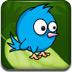 藍翎鳥回巢