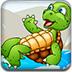 受困的小海龜