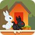 小白兔回家3